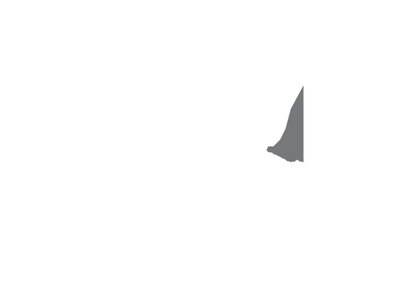 Logo TREM
